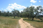 Santa Ysabel Open Space Preserve, San Diego County, CA