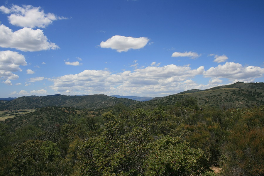 West Vista Loop Trail, Santa Ysabel, CA