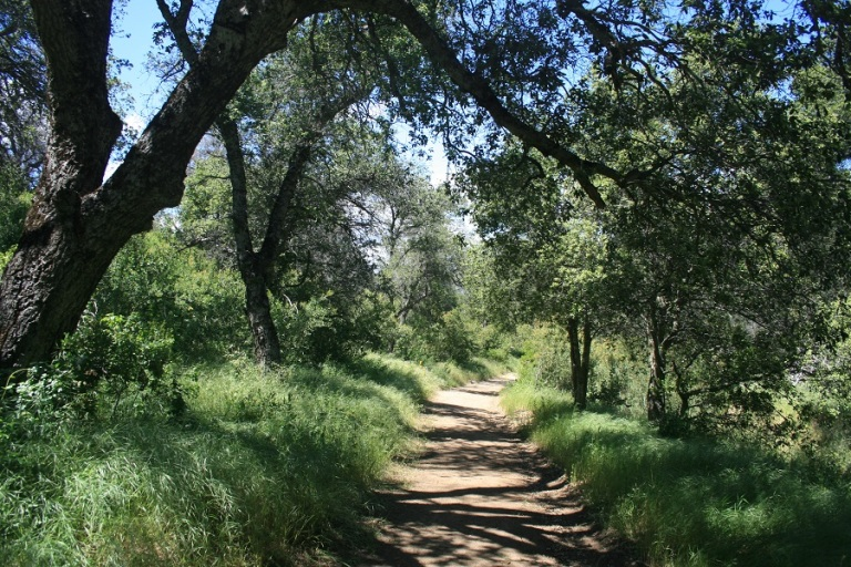 West Vista Loop Trail, Santa Ysabel, CA