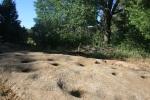 Morteros on the Azalea Glen Trail, Cuyamaca Rancho State Park, CA