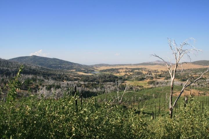Azalea Spring Fire Road, Cuyamaca Rancho State Park