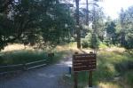 Azalea Glen Trail, Cuyamaca Rancho State Park, San Diego County, CA