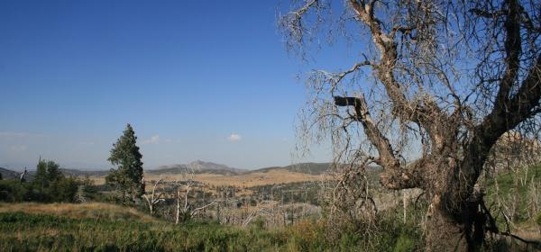 Azalea Glen Trail, Cuyamaca Rancho State Park