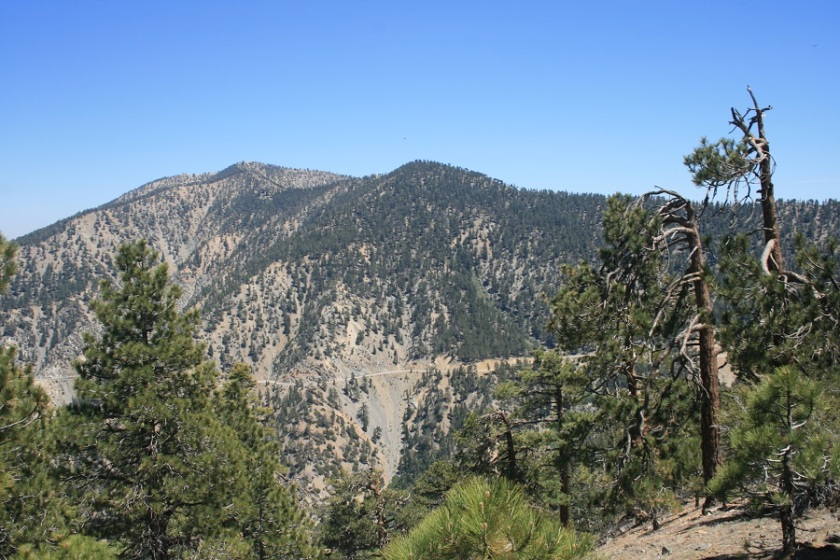 View of Mt. Baden-Powell from Mt. Lewis, Angeles National Forest