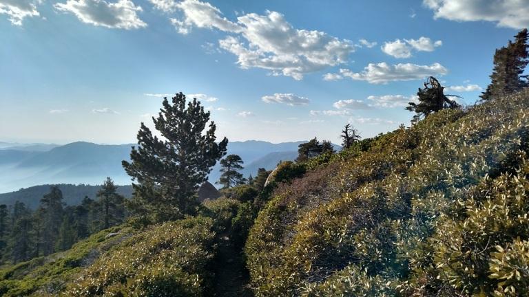 San Bernardino Peak, San Bernardino National Forest, CA