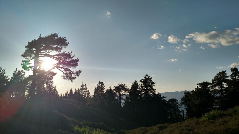 San Bernardino Peak, San Bernardino Nationanl Forest, CA