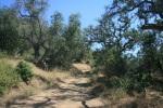 Service road at Lake Wohlford, Escondido, CA