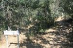 Egret Trail, Lake Wohlford, Escondido, CA