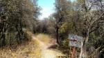 Zuma Canyon Connector Trail, Santa Monica Mountains, CA