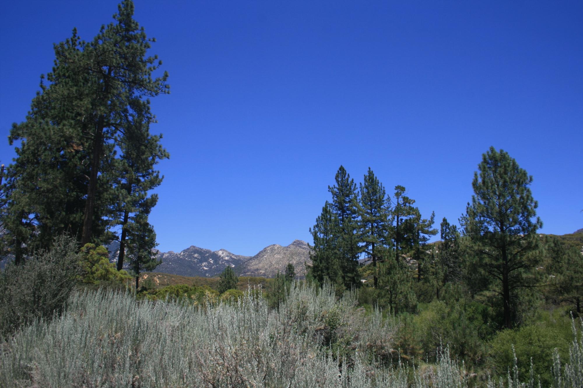 Hurkey Creek Park, Riverside County CA