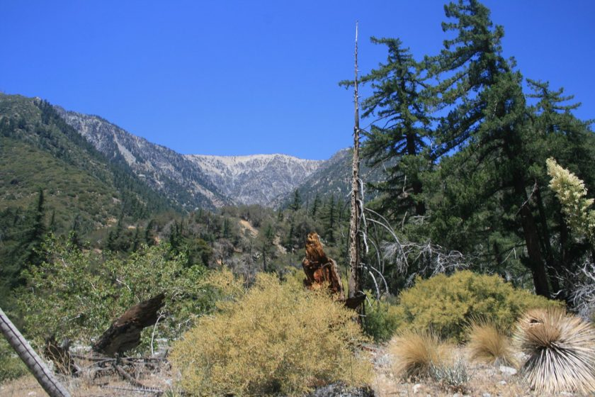 Mine Gulch, Angeles National Forest