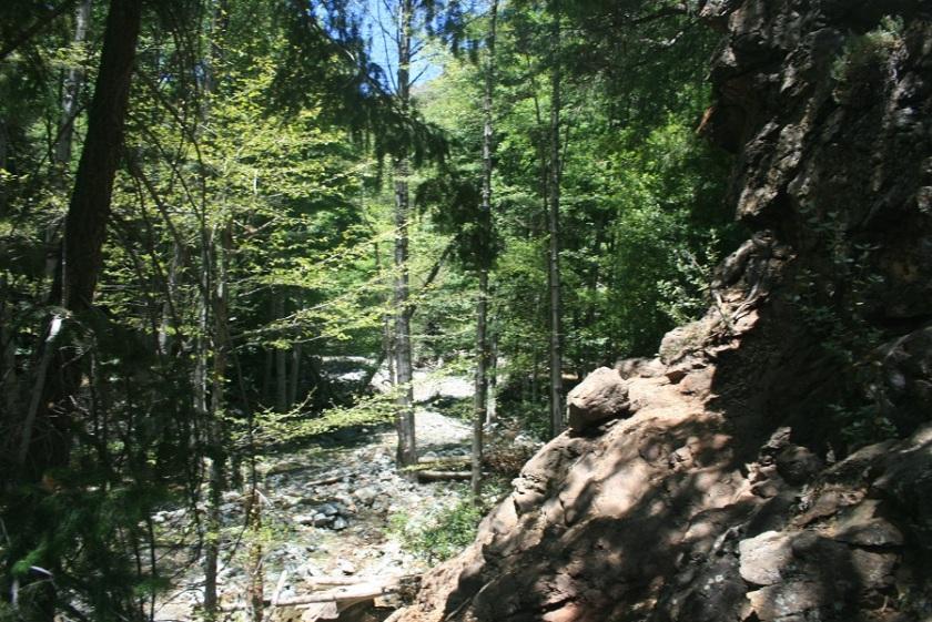 Mine Gulch Trail, San Gabriel Mountains, CA