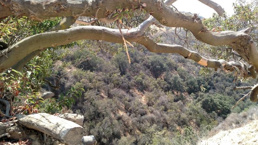 Marvin Braude Mulholland Gateway Park, Woodland Hills, CA
