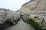 Geology at Rincon Beach, CA
