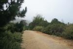 Rincon State Beach, Ventura County, CA
