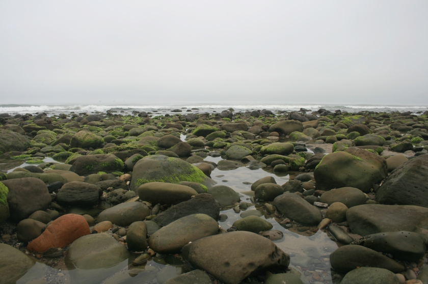 Tidepools, Rincon Point, Santa Barbara County, CA