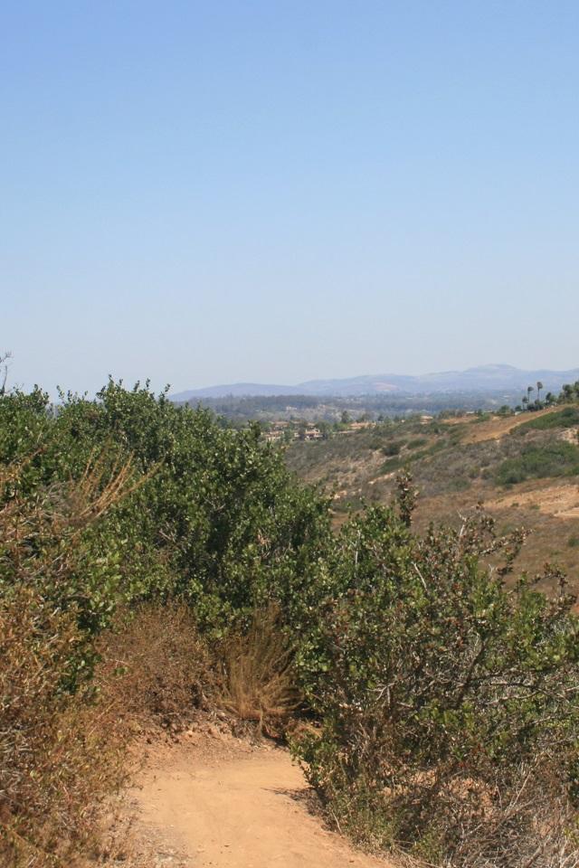 Gonzalez Canyon, San Diego, CA