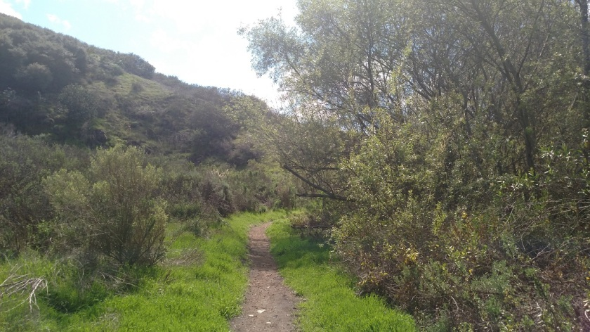 Copper Creek Trail, Rancho la Costa Reserve