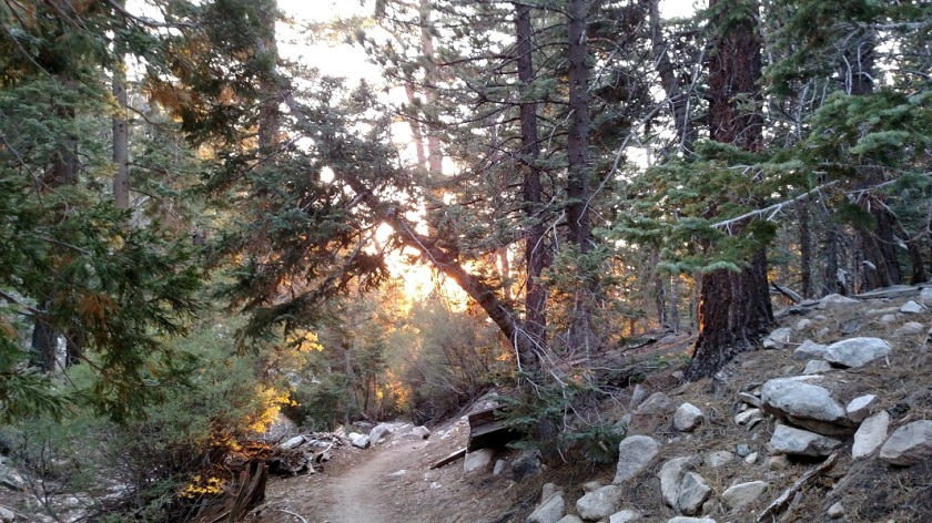 Vivian Creek Trail, San Gorgonio Mountain