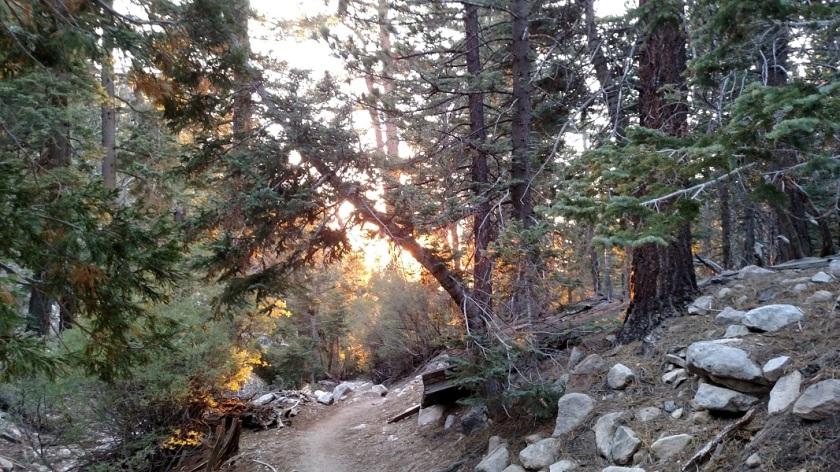 Vivian Creek Trail, San Gorgonio Mountain