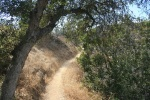 Eagle Rock Canyon Trail, Los Angeles, CA