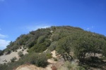 Mt. Deception, Angeles National Forest, CA