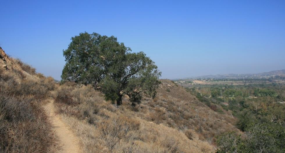 Irvine Regional Park, Orange County, CA