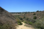 Rose Canyon Open Space, San Diego