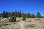 Sugarloaf Mountain, San Bernardino National Forest
