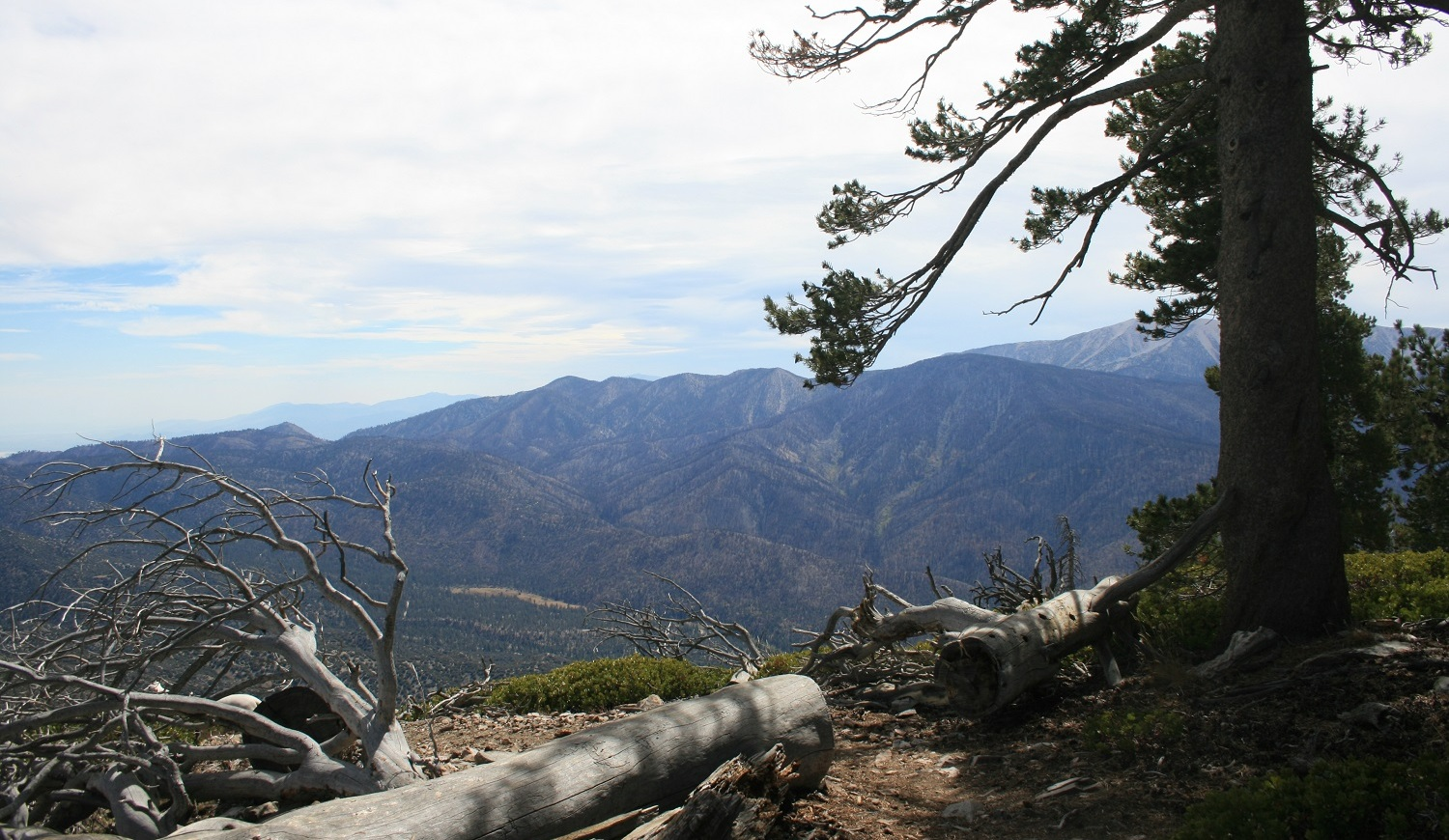 View from Sugarloaf Mountain, San Bernardino National Forest