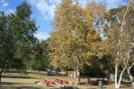 Old Zoo Picnic Area, Griffith Park