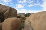 Pine City Trail, Joshua Tree National Park
