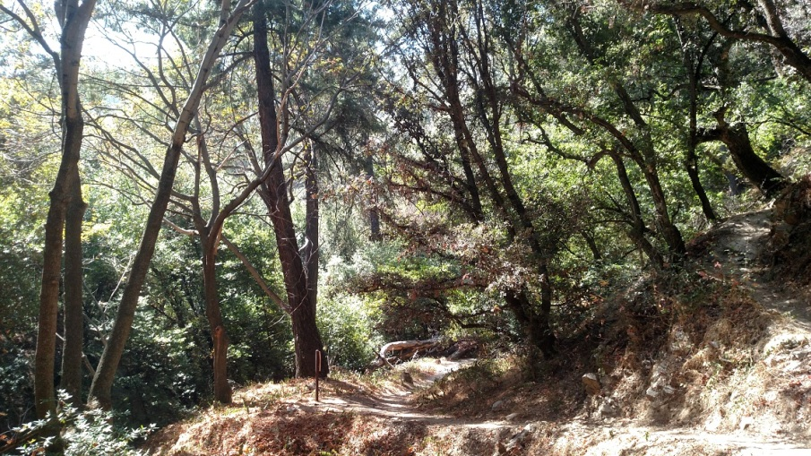 Orchard Camp, Mt. Wilson Trail