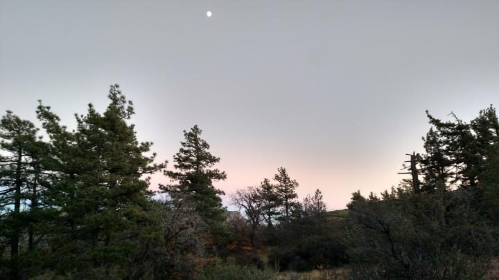Desert View Trail, Mt. Laguna, CA