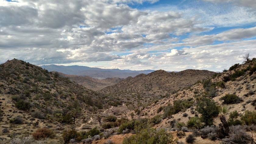 High View Nature Trail, Joshua Tree National Park