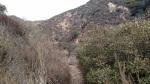 Las Flores Canyon, Pasadena, CA