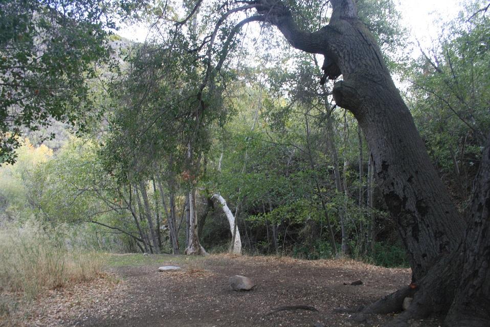 Middle Matilija Camp – Nobody Hikes in LA