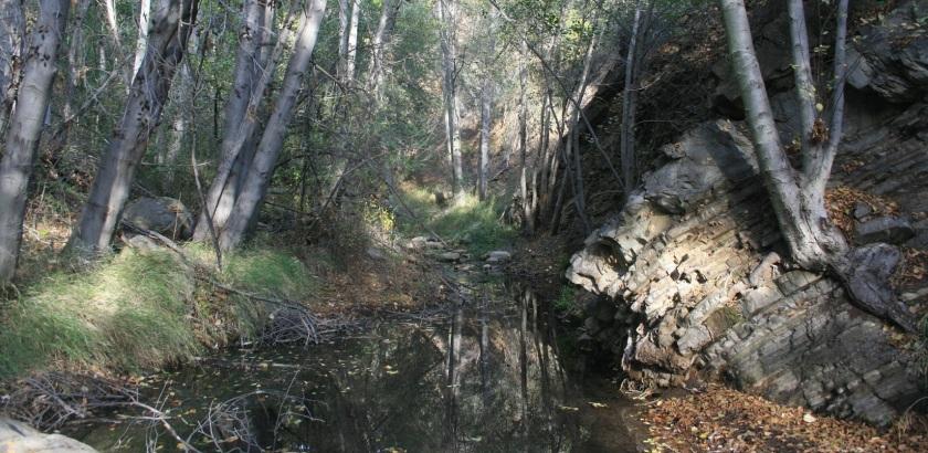Matilija Creek, Ojai, CA