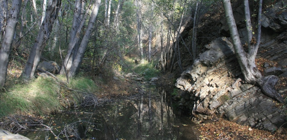 Matilija Creek, Ojai, CA