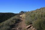 Pine Mountain, San Diego County, CA