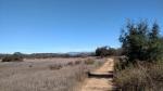 Stanley Peak Trail, Escondido, CA