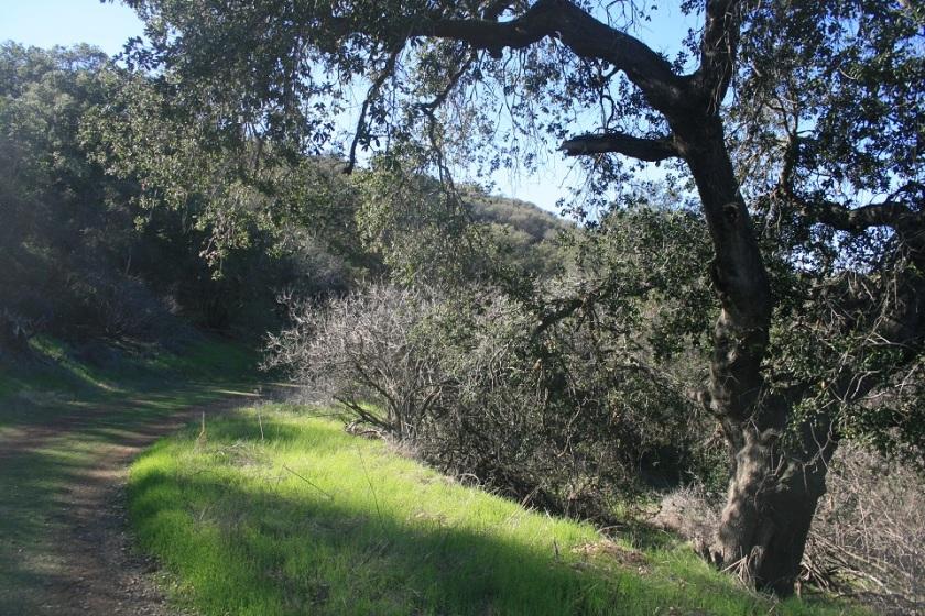 Los Robles Trail, Thousand Oaks, CA