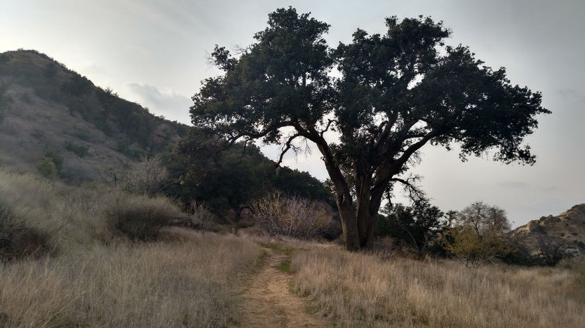 Elsmere Canyon Open Space, Santa Clarita, CA