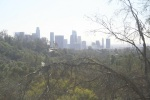View of downtown Los Angeles from Elysian Park