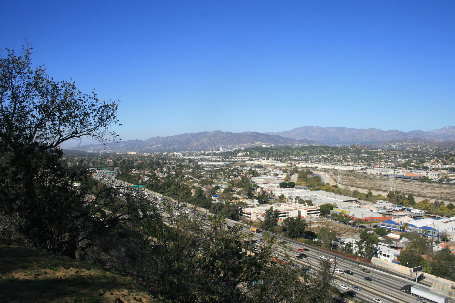 View from Elysian Park, Los Angeles, CA