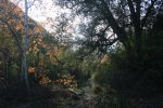 Hagador Canyon, Corona, CA