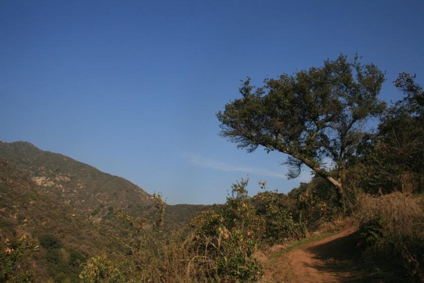 Hillside Wilderness Preserve, Monrovia, CA