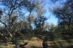 Lynnmere Trail, Thousand Oaks, CA