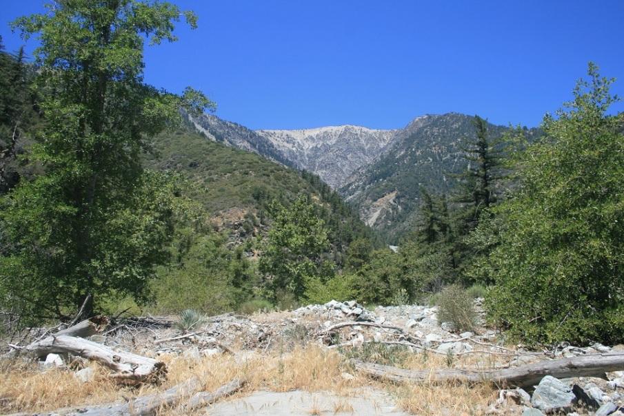 Mine Gulch, San Gabriel Mountains, CA