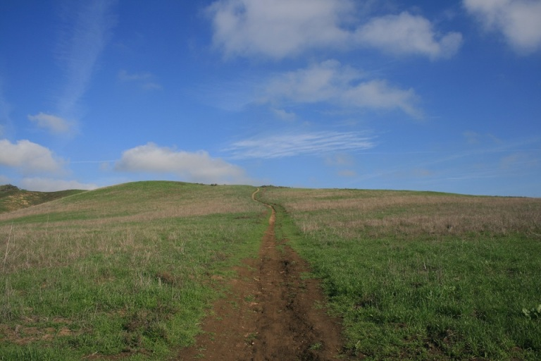 Bane Ridge Trail, Chino Hills State Park